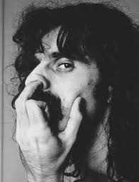 Frank Zappa, pondering the idea of a Hall of Fame for rock musicians
