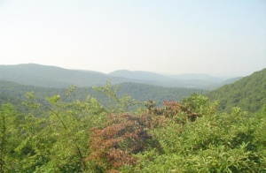 Sawmill Run Overlook2