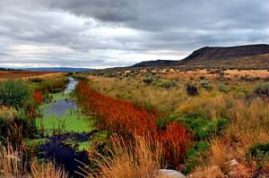 Malheur_Wildlife_Refuge_(Harney_County,_Oregon_scenic_images)_(harDA0014)